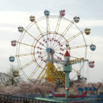 【55】上からの桜 is 最高。満開のさくら観覧車「神戸市立王子動物園」(兵庫県)