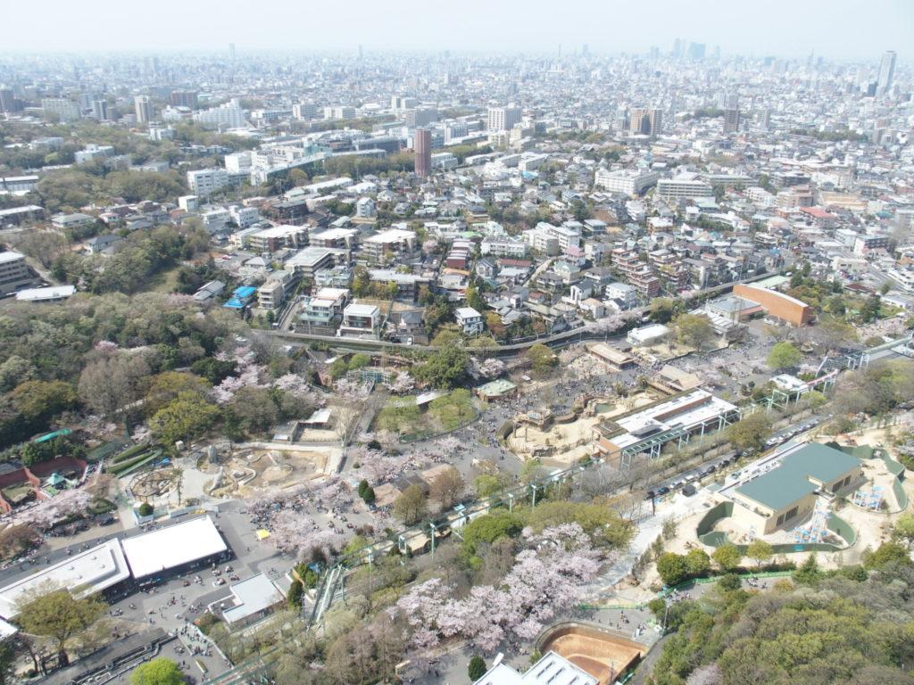 <東山スカイタワー・写真>